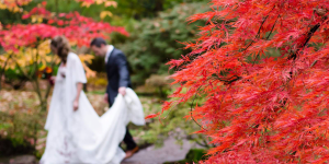 married couple walking through red trees