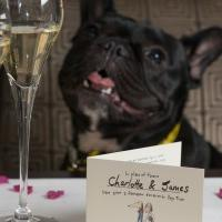 Dogs Trust Wedding Favour
