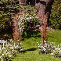 Outside wedding arch