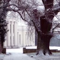 Hylands winter wedding