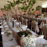 Sid and Olive Vintage Weddings perfect rustic wedding