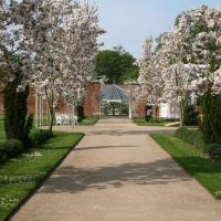 Spring at Combermere Abbey