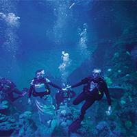 Couple getting married underwater