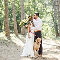 Dog in wedding photograph