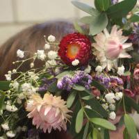 Flower Fairies Create